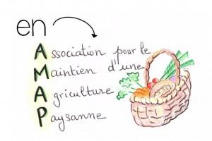 amap picardie