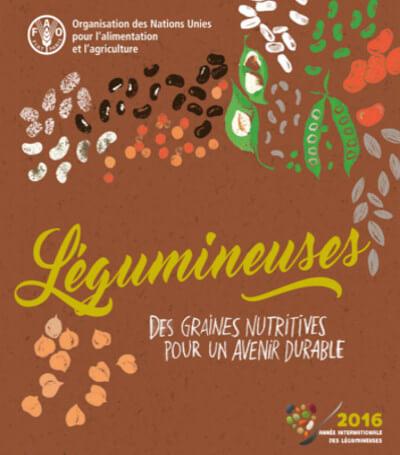legumineuses-graines-nutritivesfao