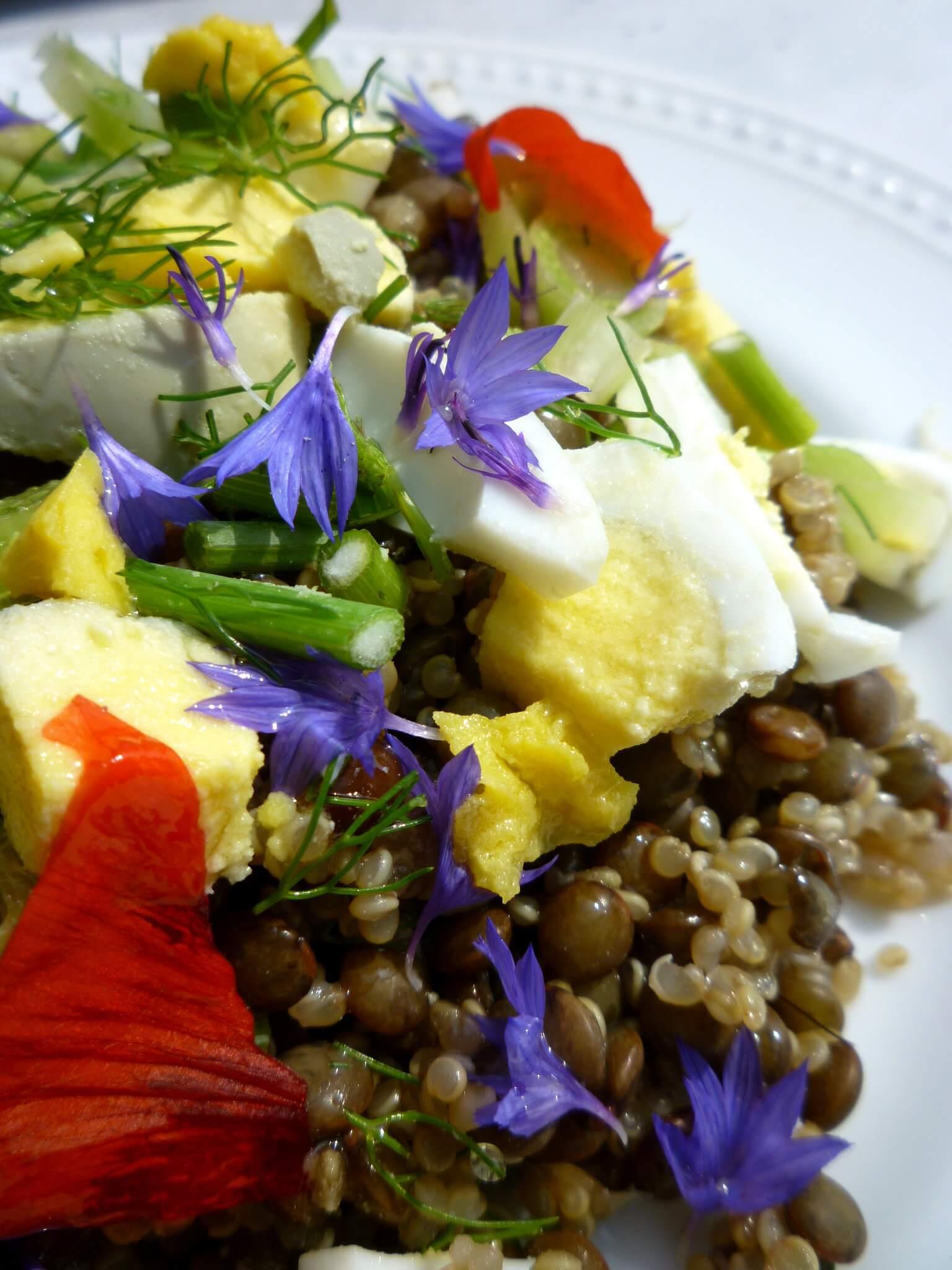 salade-lentille-quinoa (3)