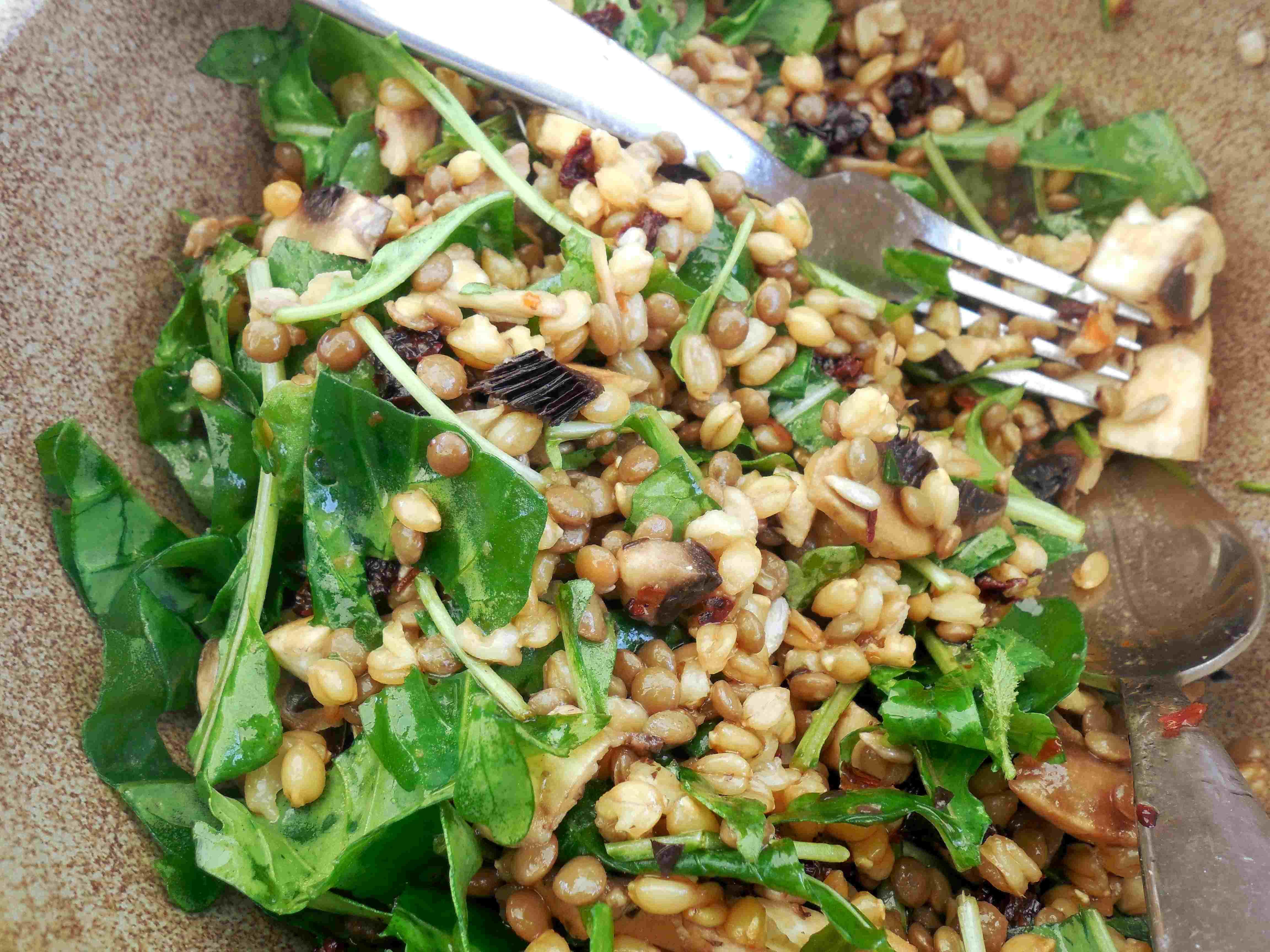 salade-lentille-PE (9)